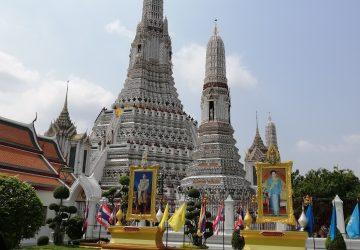 Feeding Frenzies and Golden Buddha's